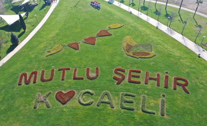 Kocaeli Seka Park'ta laleler sosyal mesaj verdi