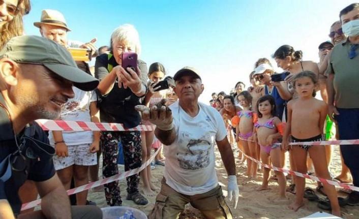 Aydın Didim'de yavru carettalar denizle buluştu