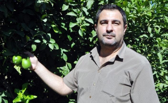 """CHP'li Tezcan: """"Üretici tüccarın insafına bırakıldı"""""""