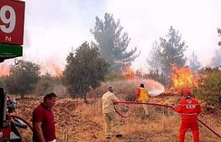 Hatay orman yangınları belgesel oldu