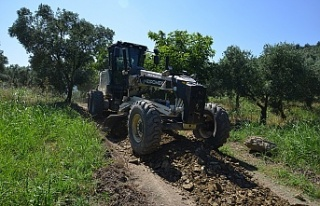 Gemlik Belediyesi'nin tarıma desteği arazi yollarıyla...
