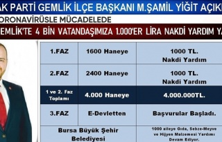 Gemlik'te 4 bin aileye 1000TL yardım