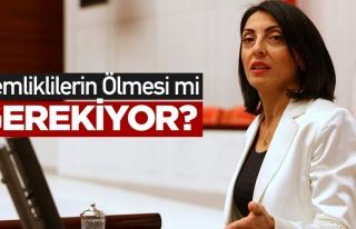 CHP'li vekilden Gemlik çıkışı: Ölmeleri mi gerekiyor!