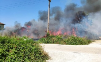 Gemsaz'da yangın evlere sıçramadan söndürüldü