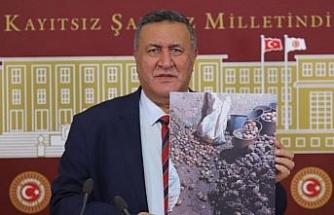 """CHP'li Vekil Gürer: """"Patatesin bir kısmı stoklansın"""""""