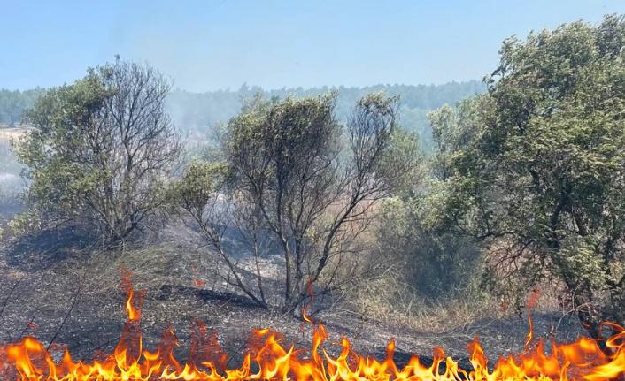 Bursa Mustafakemalpaşa'da çıkan orman yangına zamanında müdahale